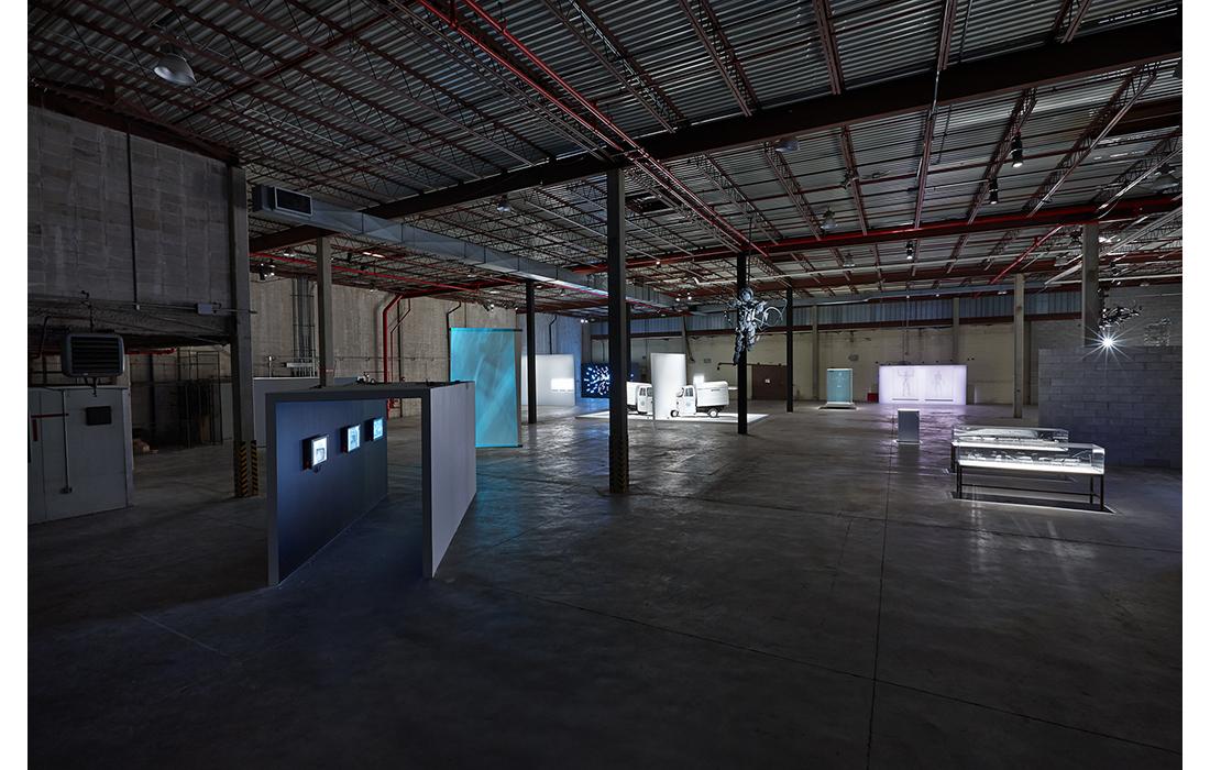 Seen/Unseen (installation view)